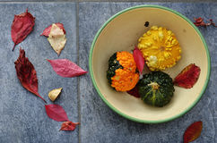 Three small pumpkins in a bowl Stock Image