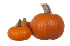 Three Small Pumpkins Isolated on White Stock Photography