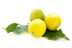 Three small yellow plums. Royalty Free Stock Image