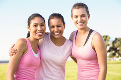 Three smiling women wearing pink for breast cancer. Portrait of three smiling women wearing pink for breast cancer in parkland Royalty Free Stock Photo