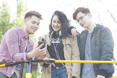 Three smiling young people talk and have great fun. Viewing images on your mobile phone. stock photo
