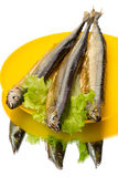 Three smoked saury Royalty Free Stock Image