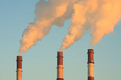 Three smoking chimneys. Lit by setting sun, against clear sky Stock Photos