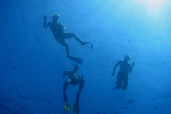 Three snorkelers on the water surface. In blue water Royalty Free Stock Photo