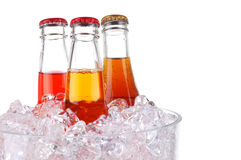 Three Sodas in Ice Bucket Royalty Free Stock Images