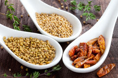 Three Spices Royalty Free Stock Photos