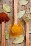 Three spices in wooden spoons Royalty Free Stock Photo