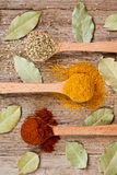 Three spices in wooden spoons and bay leaves Stock Image