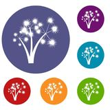 Three spiky palm trees icons set Royalty Free Stock Image