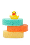 Three sponges and rubber duck Royalty Free Stock Photo