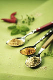 Three Spoonfuls of Spices Stock Images