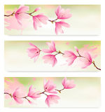 Three Spring banners with blossom brunch. Of pink flowers. Vector Royalty Free Stock Photography