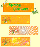 Three spring banners with spring flowers. Stock Images