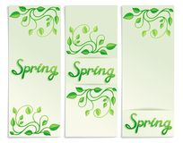 Three Spring green leaves banners Royalty Free Stock Photo