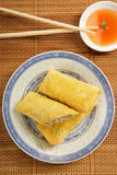 Three spring rolls Royalty Free Stock Photo