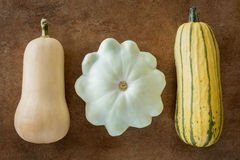 Three Squash Varieties Royalty Free Stock Photography
