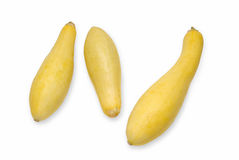 Three Squash. Three Yellow Summer Squash isolated with clipping path Royalty Free Stock Images