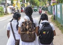 Three sri lankan school girls in uniform walking on the street after classes. In Sri Lanka royalty free stock image