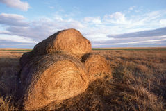 Three Stacks of Hay. In Midwestern field piled on one another Stock Photo