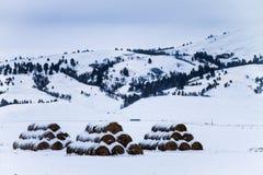 Three Stacks of Snowy Hey Bales royalty free stock photo