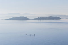 Three stand up paddle boarders out into open water Stock Photos