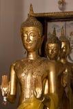 Three standing buddha statue Stock Photos