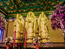Three standing gold pained Chinese Buddha statues. Three standing gold pained Chinese Buddha statues in Thailand. With small Buddha statues at the wall behind Stock Photos