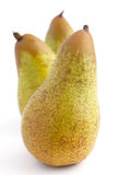Three standing whole pears Royalty Free Stock Image