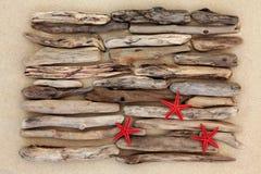 Three Starfish Stock Photos