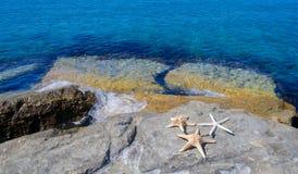 Three starfishes next to sea Royalty Free Stock Image