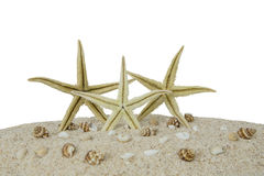 Three starfishes on the sand beach Royalty Free Stock Image