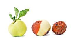 Three states of apple Royalty Free Stock Photos