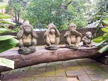 Three statue of a family of monkeys. stock images