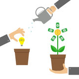 Three step infographic. Businessman hand holding money tree, watering can, idea bulb. Coin dollar sign Plant in the pot. Financial Royalty Free Stock Photography