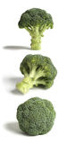 Three Sticks of Broccoli. Royalty Free Stock Images