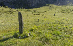 Three-stone menhirs, Altai, Russia. Royalty Free Stock Images