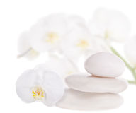 Three Stones And White Orchids Royalty Free Stock Image