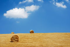 Three straw bales Royalty Free Stock Photo