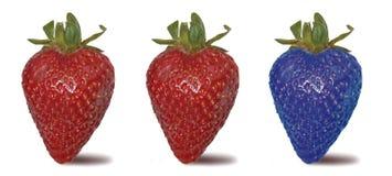 Three strawberries Stock Photography