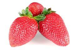 Three strawberries. Three horizontal juicy strawberries on white background Stock Image