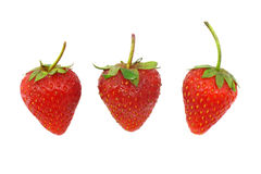 Three strawberries Stock Images