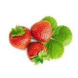 Three strawberries Royalty Free Stock Photos