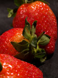 Three Strawberries. In a line with the middle one in focus Royalty Free Stock Images