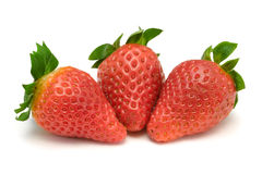 Three strawberries, close-up Stock Photography