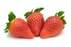Three strawberries, close-up Stock Photography