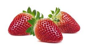 Three strawberries horizontal composition  on white back Royalty Free Stock Photos
