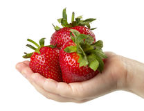 Three Strawberries In The Hand Royalty Free Stock Photos