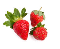 Three strawberries isolated Stock Image