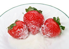 Three Strawberries with Sugar. Three nice juicy strawberries on a plate with some sugar royalty free stock photos