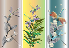 Three strips with dragonflies and flowers Stock Photos